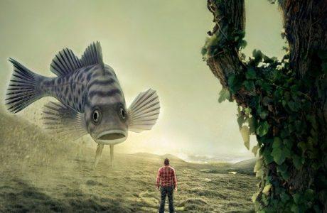האם דג יכול לטפס על עץ?  ומה הקשר לפסיכולוגיה חיובית?